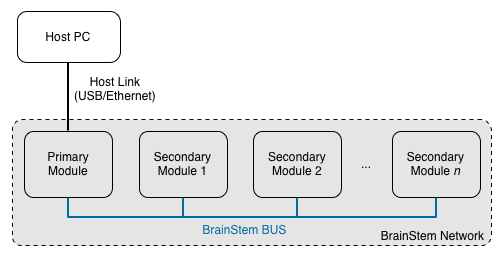 BrainStem Network